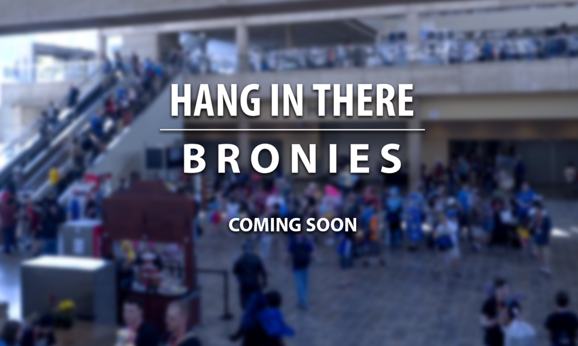 HANG IN THERE - BRONIES